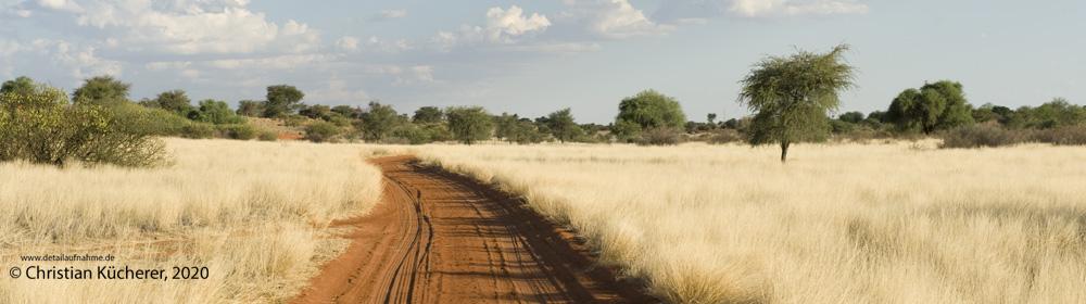 featured-image-Namibia-Reisebericht